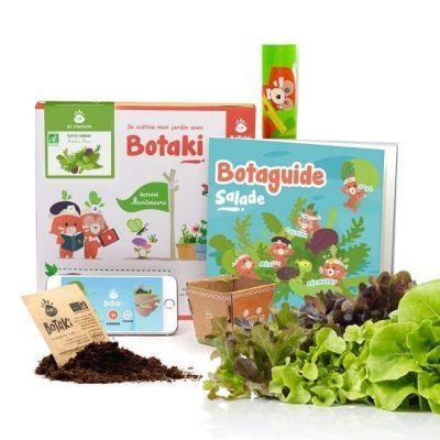Activité de jardinage Salade
