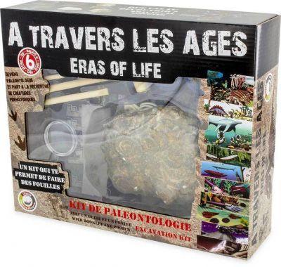 Activité Kit de paléo Dinosaures A travers les âges